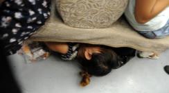 Metrobüste bir şey mi? Beterin beteri Çin'de toplu taşıma.