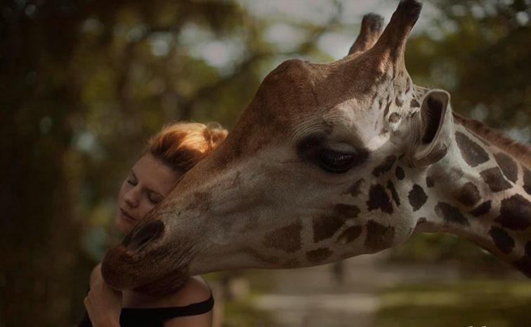 Vahşi Hayvanlarla Çekilmiş Ölümcül 20 Portre